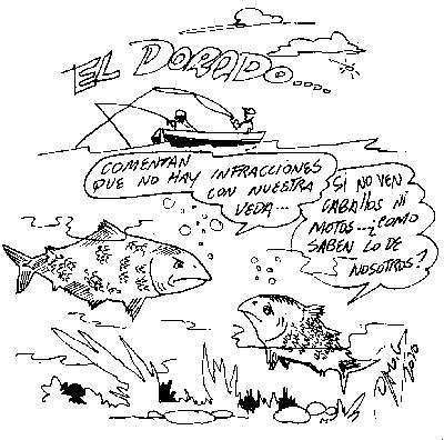 darog 291110