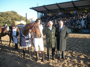 Gran campeona hembra caballo de Polo Argentino, box 2056 de  Pablo Salomone (raza que tiene más convocatoria en Palermo).