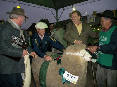 GRAN CAMPEÓN CORRIEDALE El Secretario de Agricultura Luiz Fernando Mainardi coronó al Gran Campeón Corriedale  de cabaña Sao Matteus de Parrasio Collares