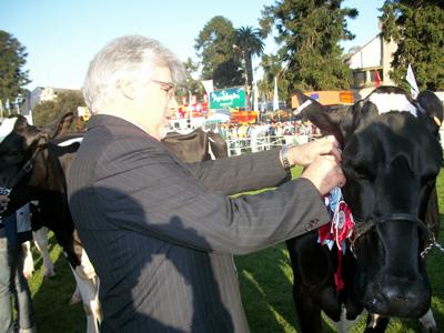 El Ministro Tabaré Aguerre corona la Gran Campeona Holando SH  de la tarde.