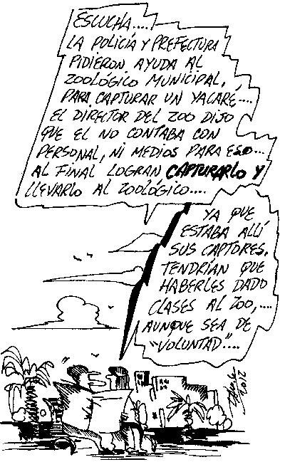darog 171012