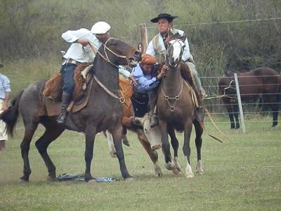 Apadrinadores trabajando en el ruedo