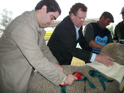 Joaquín Martinicorena, junto al Ministro de Ganadería y Agricultura de Brasil,  coronando al Gran Campeón Ideal del año pasado en Esteio. Este año el presidente  del Secretariado Uruguayo de la Lana (SUL) será homenajeado en Esteio.