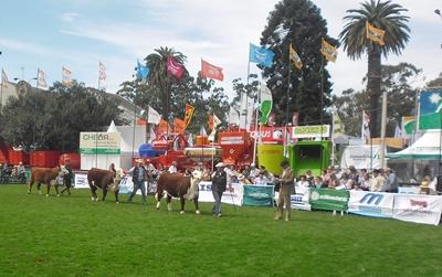 Jura de la raza Hereford, donde Canirel SA y Omar Burutarán obtuvieron el premio  de campeona vaca joven. El Gran campeón macho fue para Carlos Romay  y la Gran Campeona Hembra fue para El Paraíso SG.