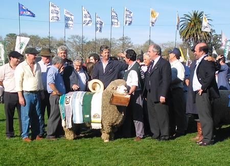 El Presidente visitó la muestra. El Presidente de la República José Mujica coronó a varios grandes campeones de la Expo Prado 2013.  En la foto la coronación del Gran Campeón Pedigree de la raza Corriedale.