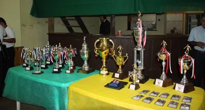 Todos los trofeos entregados por el fútbol Máster