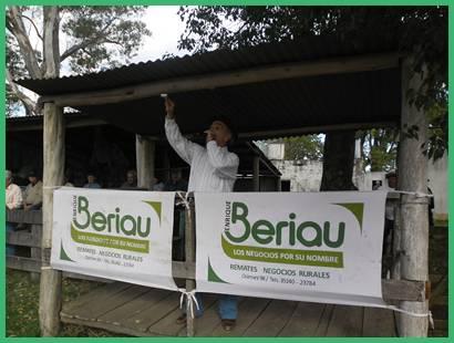 beriau (3)