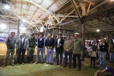 Integrantes de la cabaña y de los escritorios en remate del año pasado en la Agropecuaria de Salto