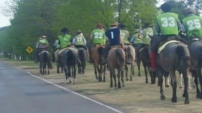 Los caballos Criollos del Uruguay siguen mostrando sus bondades