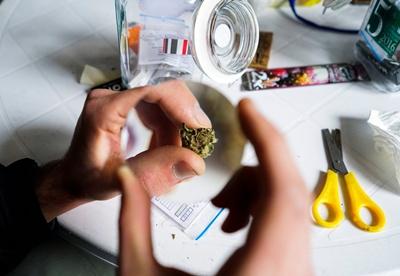maruja3 - Por ahora no cerrarán cuentas bancarias de Instituto del Cannabis