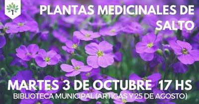 plantasmedicinales001