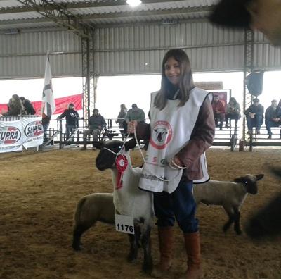 Antonella Domínguez Henderson de cabaña La Estanzuela continúa la labor de su abuelo Diego Henderson. Ayer  obtuvo la reservada campeona oveja con el brete 1176