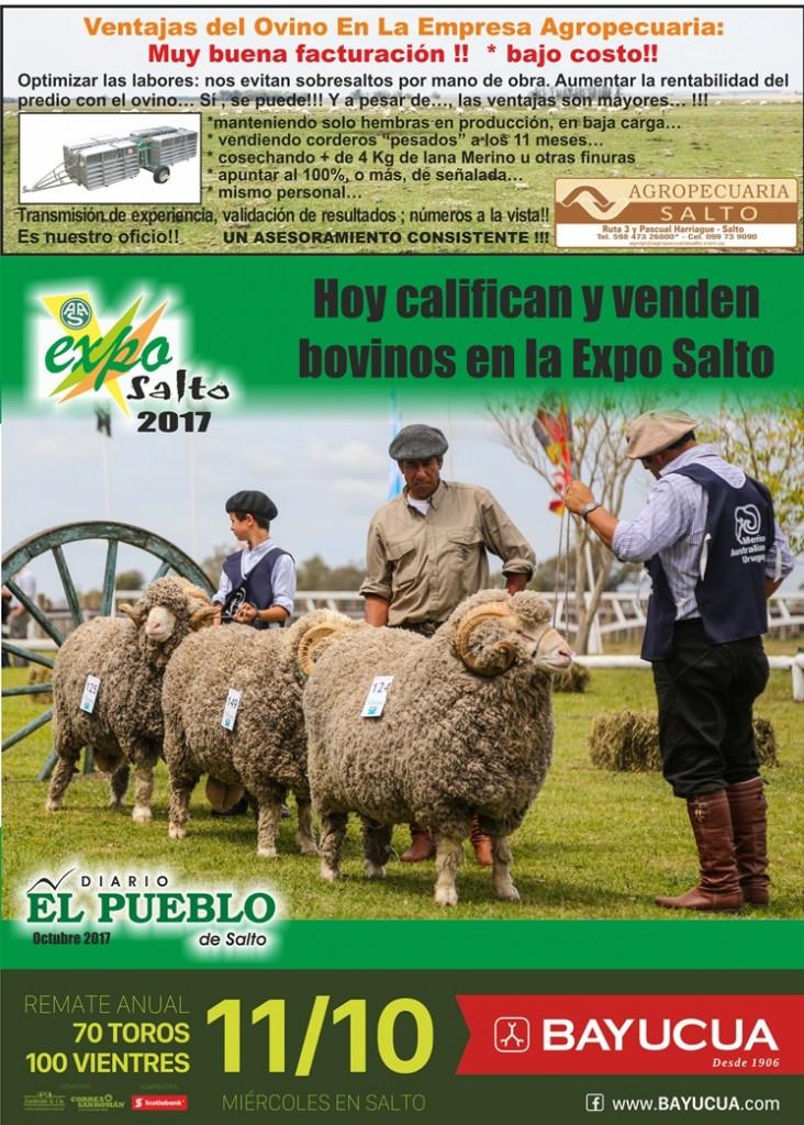 Expo Salto 2017 pag1