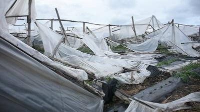Fuerte turbonada provocó  importantes daños en la infraestructura eléctrica afectando a 4000 usuarios