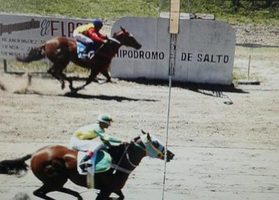 Una gran reunión hípica se vivió el pasado domingo en el Hipódromo de Salto