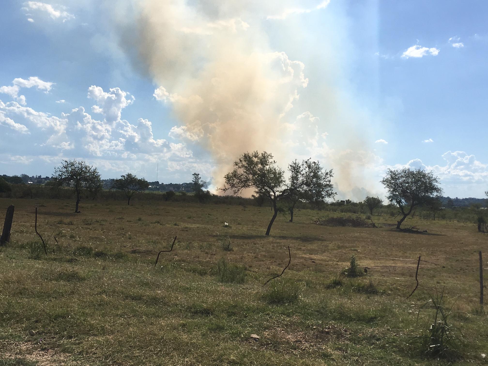 IncendioCampo2312