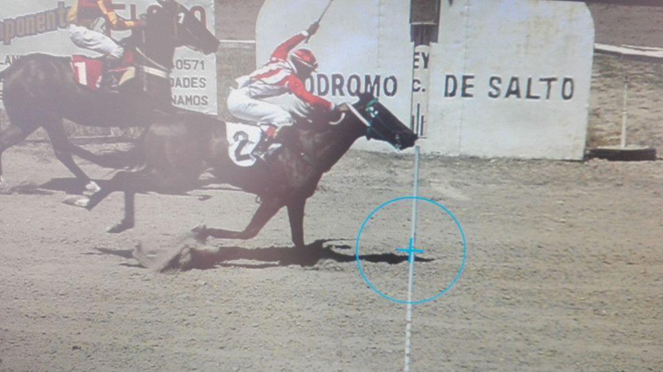 Y cruzaron el disco, ayer en la segunda carrera Terrorista con la monta de Javier de los Santos fue el primero