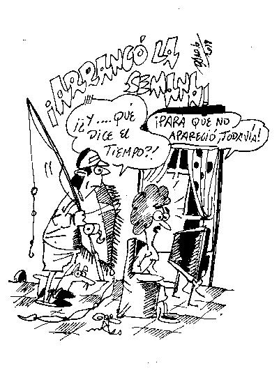 Daro 26