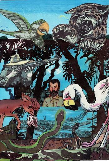 cuentos selva 002