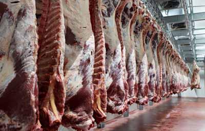 Canales-de-carne