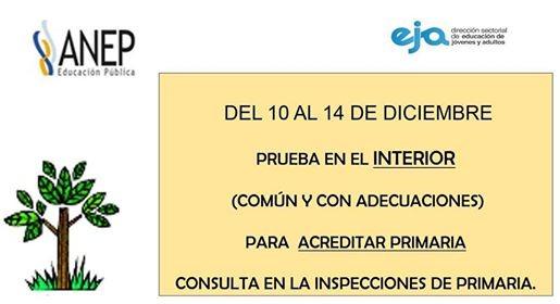 bb676a51-8479-451a-9e5c-b700328d1553