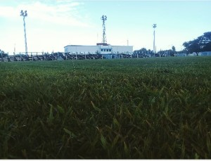 EstadioWalterMartinez
