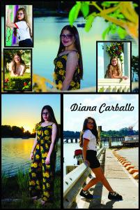 Diana EXT Diario