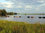 inundacion_0