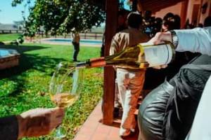 Los vinos producidos en Uruguay y en la Campaña Gaucha son los protagonistas de las degustaciones guiadas, la armonización de los platos y las discusiones de las conferencias. / Natalia Sosa