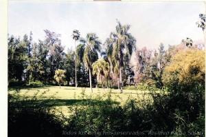 ParqueSolariFotoIsidraSolari