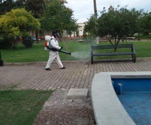 Larga jornada  de fumigaciones  llevó adelante  el municipio de  Bella Unión