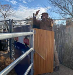 Francisco Cánepa rematando el sábado en La Rural de Florida